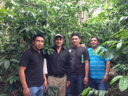 San Fernando Farmers