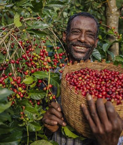 Kenya Mirangu
